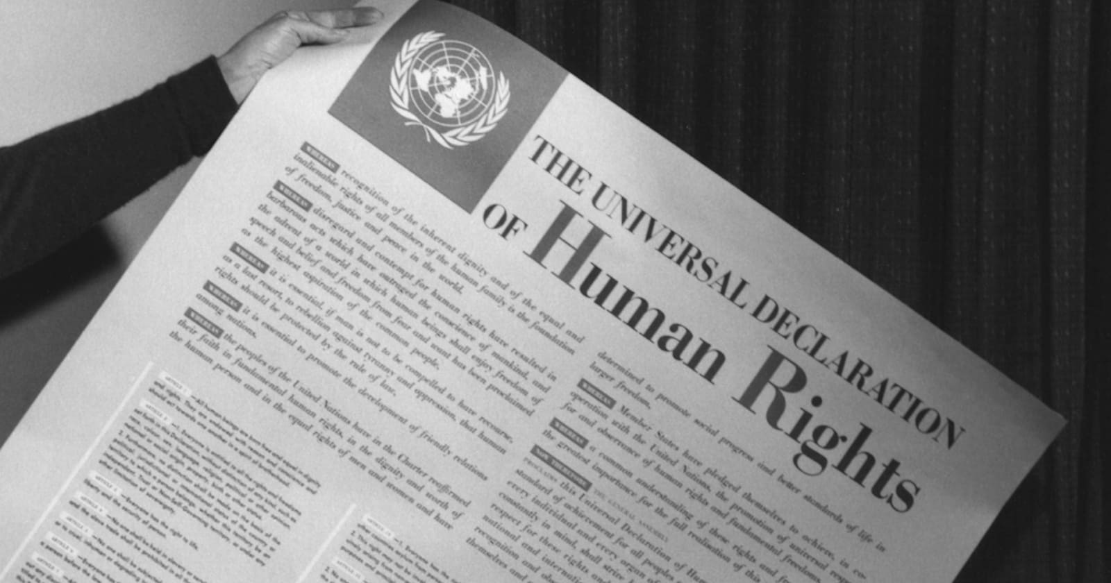 Declarația Universală a Drepturilor Omului